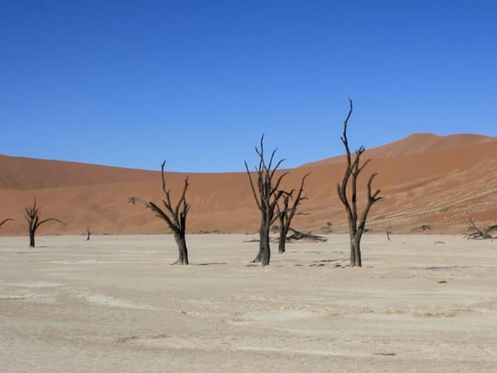 Ralf Blackstein – Wüste