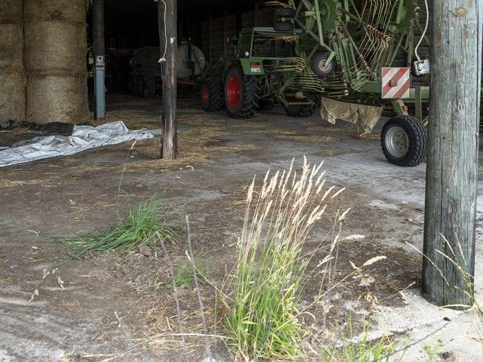 Angelika Shaikh – Ein Bauer gibt auf